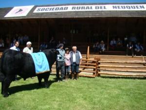 Gran Campeón Angus PP Expo Bovinos del Neuquén 2014