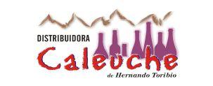 Banner Caleuche
